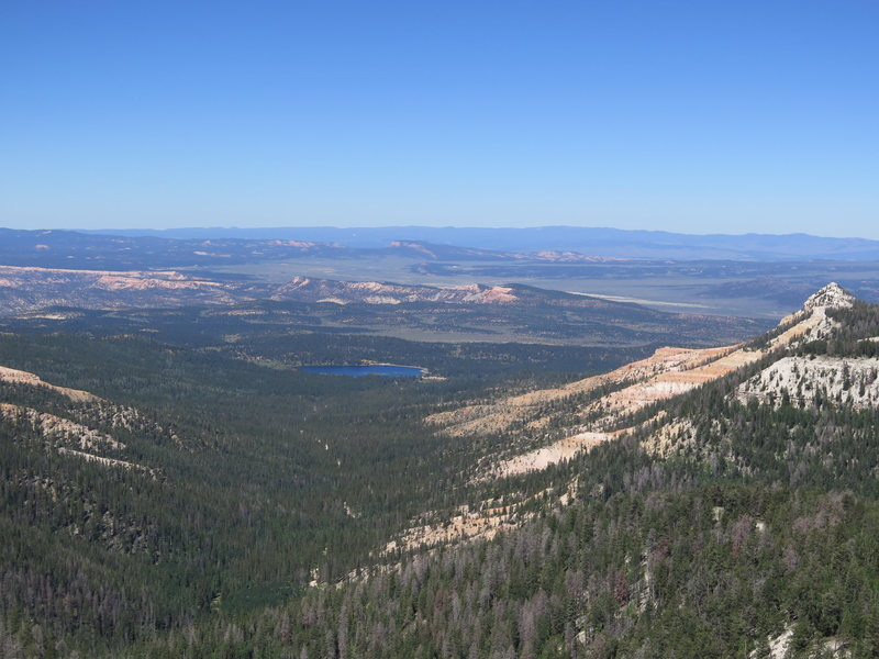 Pine Lake as viewed from the Flying Raptor's Area