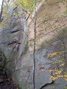 Rock Climbing Photo: Autumn, RRG Oct '14