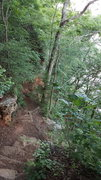 Rock Climbing Photo: Looking down the steps to base of climbs
