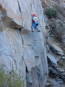 Rock Climbing Photo: 8 year old Paige killing it on the Main Wall at Ti...