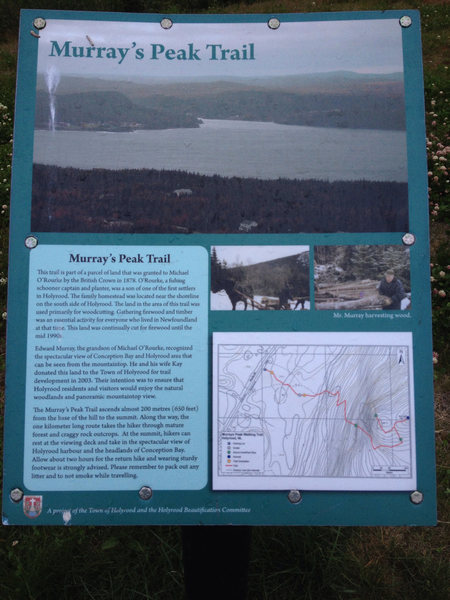 Murray's Peak Trail sign
