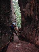 Rock Climbing Photo: Finishing 120 feet of decomposing chimney.  More l...