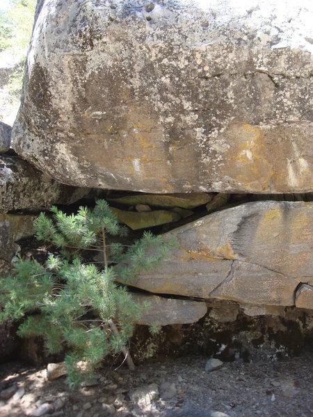 Rock Climbing Photo: Joan Rivers