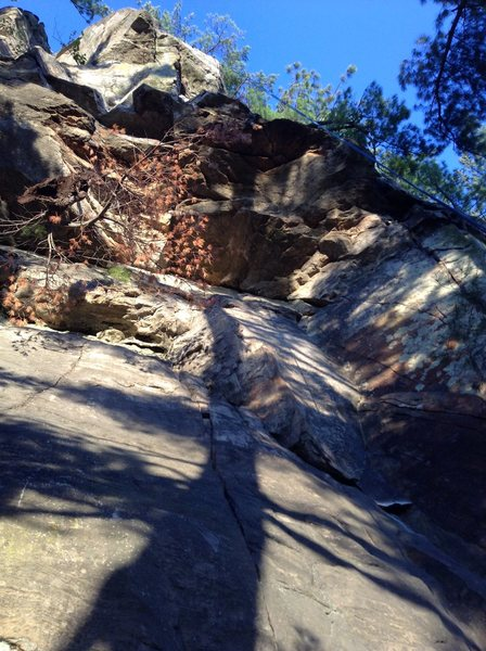 Rock Climbing Photo: View of Frog Flicker from the bottom.