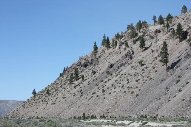 The scenic Mono Craters, June Lake Area