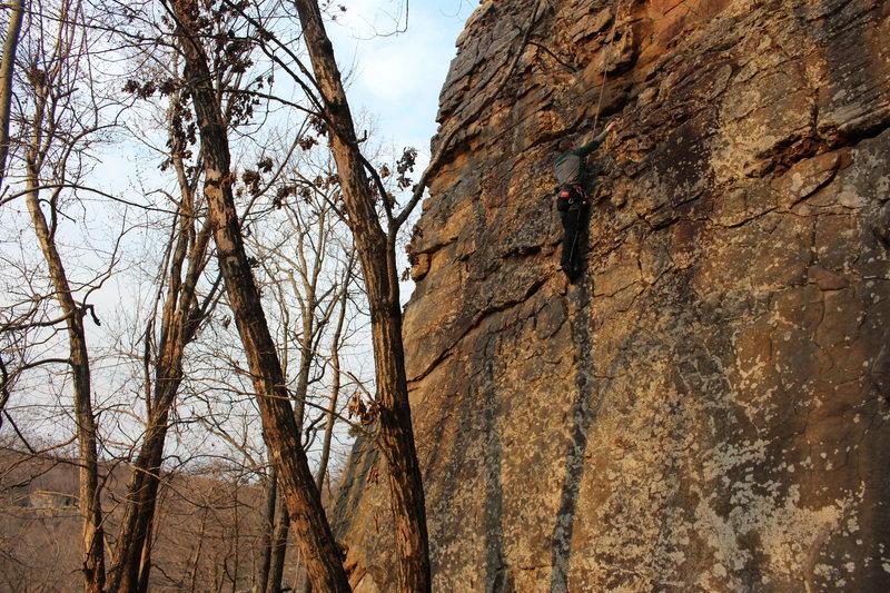 Rock Climbing Photo: Climber on Brand New