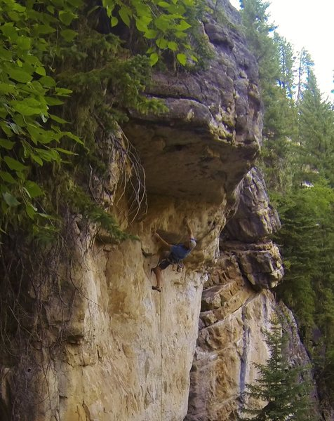 Rock Climbing Photo: Killer!