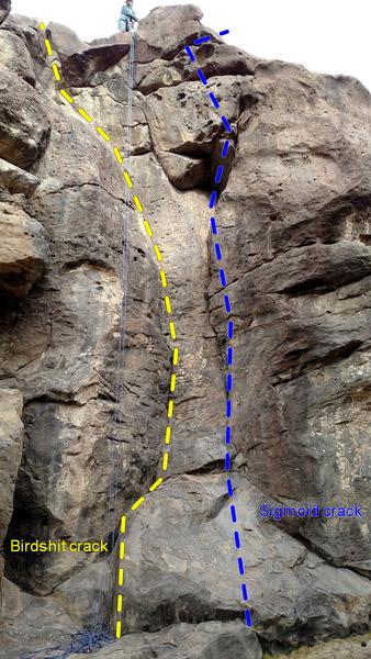 Rock Climbing Photo: Birdshit crack