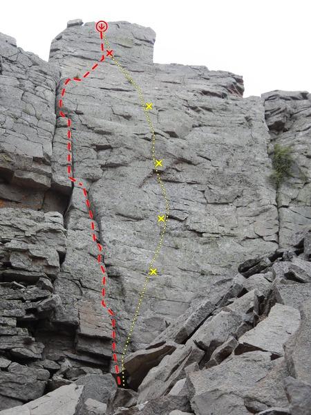 Bushtit Topo<br> Red = Bushtit<br> Yellow = Titmouse