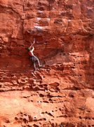 Rock Climbing Photo: Setting the draw under the bulge. On good hands an...
