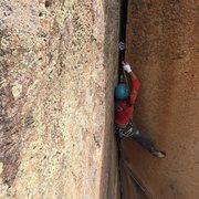 Rock Climbing Photo: Good stems.