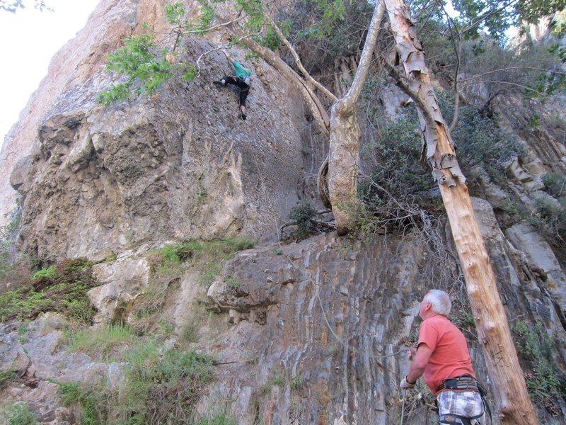 Rock Climbing Photo: Here is Derek Stewart on the lead of Economique 5....