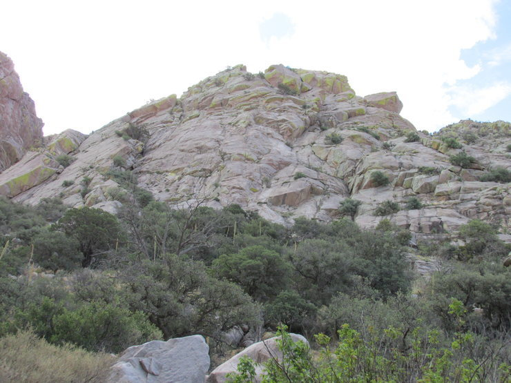 Rock Climbing Photo: View of the slabs from the bottom of the canyon.