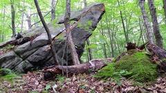 Rock Climbing Photo: Pinnacle Point Street Side