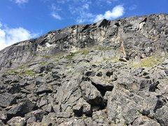 Rock Climbing Photo: The Barnyard area