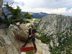 Rock Climbing Photo: Fitz with the Billy Goat Stoke on the Summit of Th...