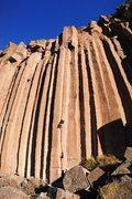 Rock Climbing Photo: Tony on Gold Rush