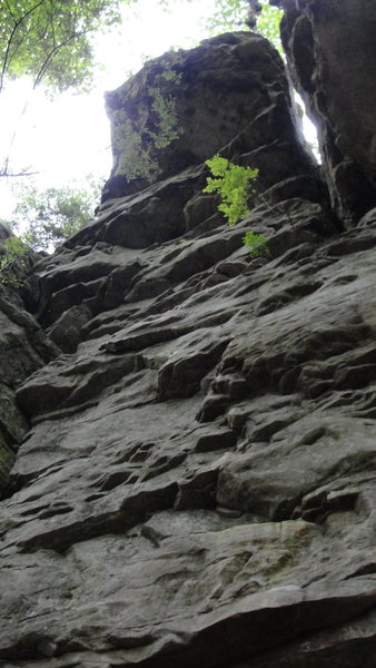 Rock Climbing Photo: Boogie Man- 13a.
