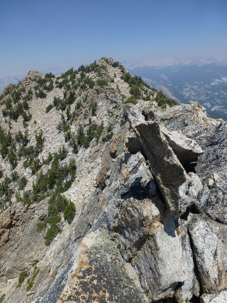Rock Climbing Photo: Looking east to the true summit of Tuolumne Peak f...