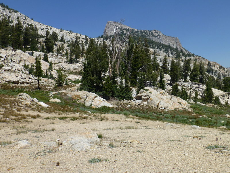 Tuolumne Peak as seen from the saddle north of May Lake