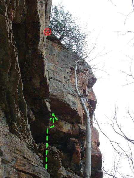 Rock Climbing Photo: Christmas Corner