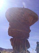 Rock Climbing Photo: Happy turk in moab