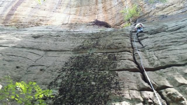 Rock Climbing Photo: Laceration, Mariba Fork, KY