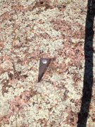 Rock Climbing Photo: One of the OLD bolts you get to clip.