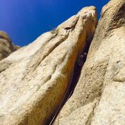 Rock Climbing Photo: Dylan partway up.
