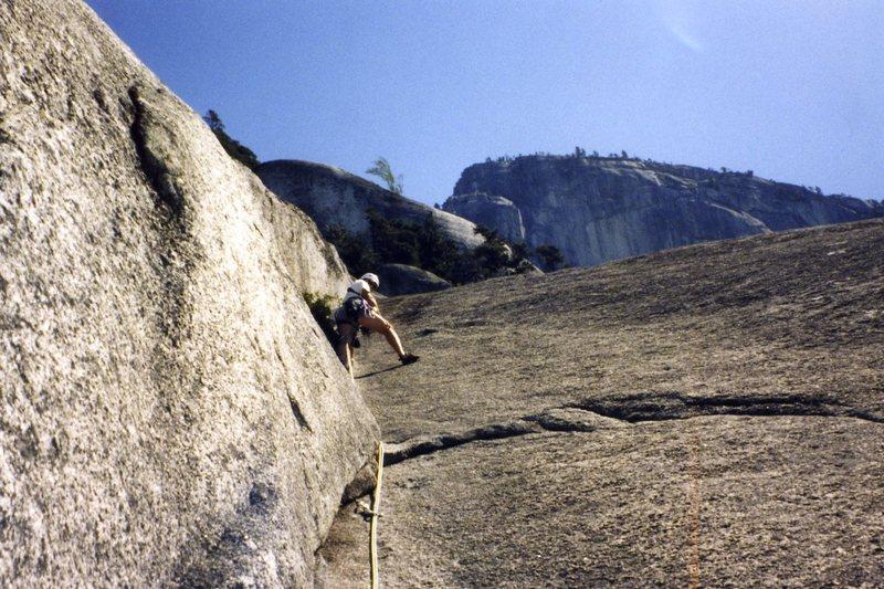 Climbing Snake.