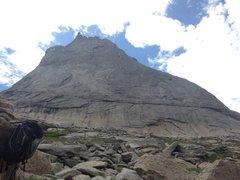 Rock Climbing Photo: The Barb 10b