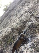 Rock Climbing Photo: Putty giving me beta for my first 10c, step into t...
