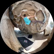 Rock Climbing Photo: The classic Caveman route at J Tree.