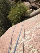 Rock Climbing Photo: Looking down at the big bush you must climb throug...