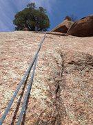 Rock Climbing Photo: Garden Party