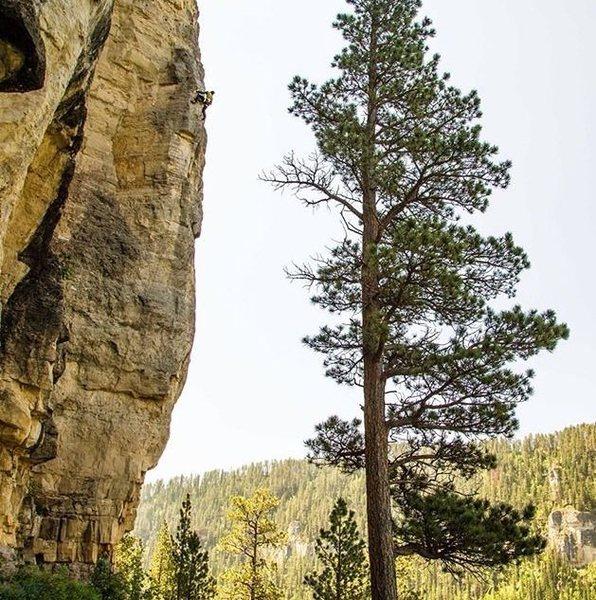 Rock Climbing Photo: Sky liner