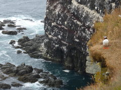 Rock Climbing Photo: Latrabjarg