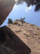 Rock Climbing Photo: Fighting the Elvis leg.