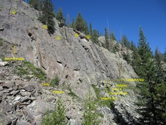 Rock Climbing Photo: Right side of main wall.