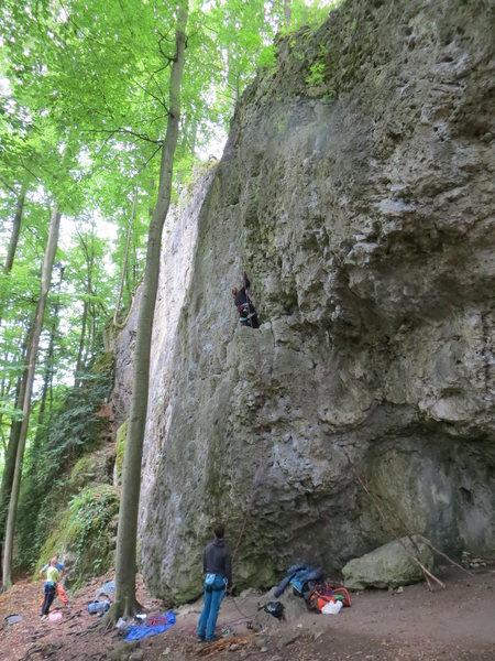 Rock Climbing Photo: Fanny on Alf