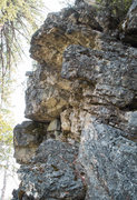Rock Climbing Photo: The Delicate Tiger roof section.  The route contin...