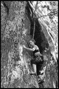 Rock Climbing Photo: Torie starting up this surprisingly fun little cli...