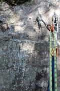 Rock Climbing Photo: the unfortunate sap attack