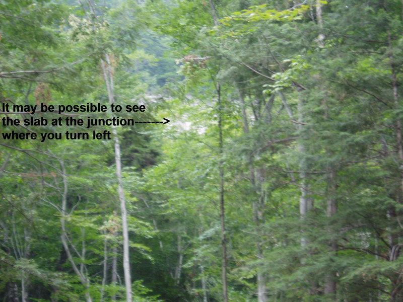 Rock Climbing Photo: [Access photo#4] Slab through the trees, near wher...