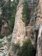 Rock Climbing Photo: The climb starts behind and below the bush at the ...