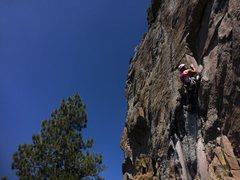 Rock Climbing Photo: queen of burl - Big Chief