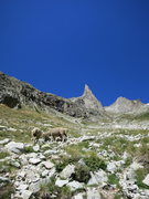 Rock Climbing Photo: beau-colic