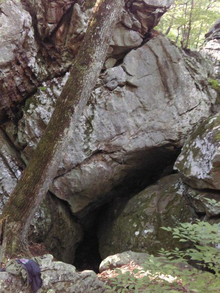 The pee spot