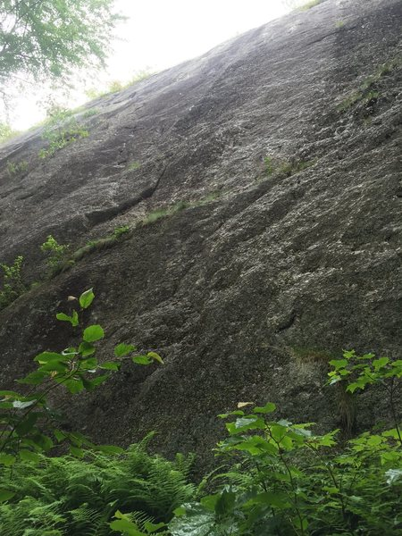 Rock Climbing Photo: From where the trail intersects the wall. Gully th...
