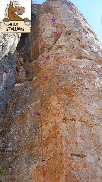 Rock Climbing Photo: Wyld Stallions